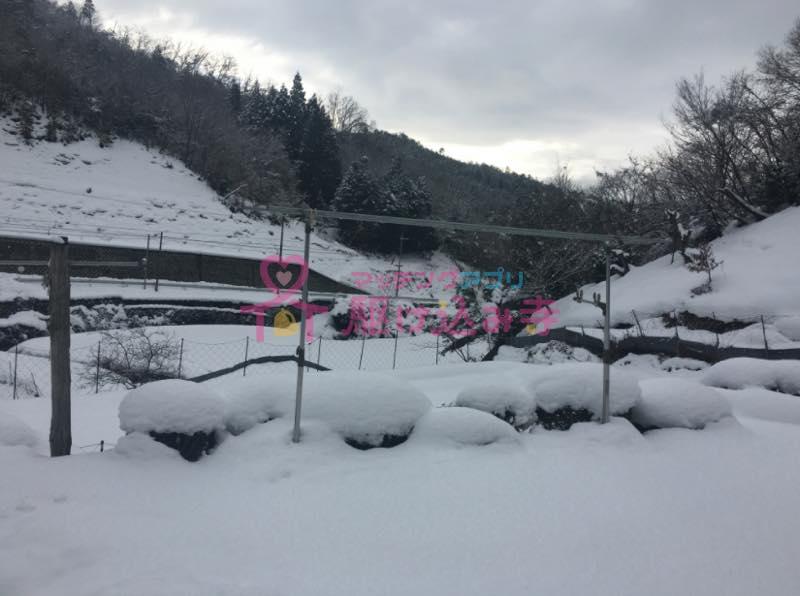 雪が積もった田舎の風景の写真