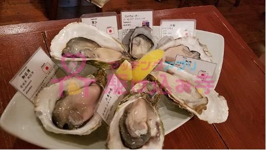 牡蠣が並べられた写真