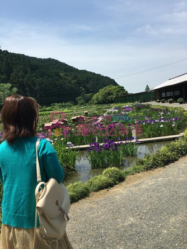 加茂荘花鳥園を歩く女性の写真