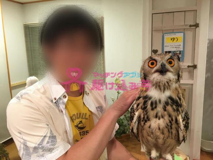 フクロウをもった男性の写真