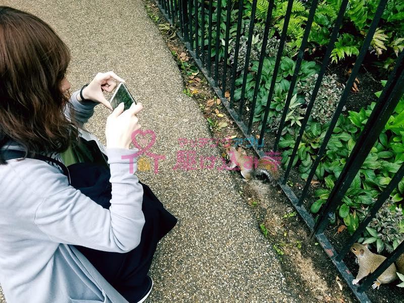 リスの写真を撮る女性の写真