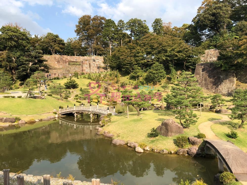 広大な庭園の写真